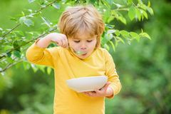 Nutrizione per i bambini Piccolo ragazzo del bambino mangia il porridge all'aperto Avere grande appetito Nutrizione organica Sano immagine stock libera da diritti