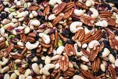 nuts выбор Стоковая Фотография RF