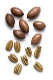 nuts пекан Стоковое Изображение RF