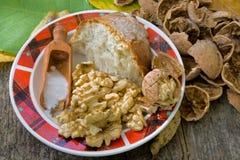 nuts плита Стоковые Фото