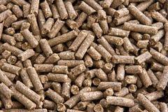 nuts пони Стоковая Фотография RF