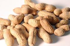 nuts раковина арахисов Стоковая Фотография RF