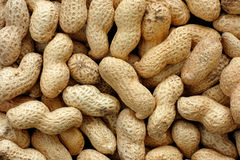 nuts раковина арахисов Стоковое фото RF