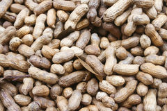 nuts раковина арахисов Стоковое Изображение RF