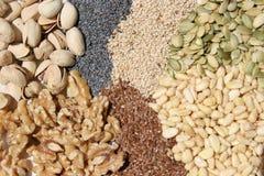 nuts семена Стоковые Изображения RF