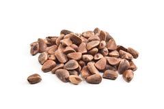 nuts сосенка кучи Стоковые Изображения RF