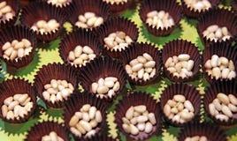 nuts сосенка Стоковое Изображение RF