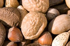 Nuts. A pile of mixed nuts Stock Images