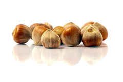 Nuts. Hazelnuts on a white background Royalty Free Stock Image