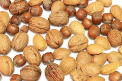 Nuts. Mixed nuts on white background royalty free stock photography