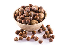 Nuts. Royalty Free Stock Image