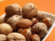 Nuts. Macro of nuts on orange background stock photo