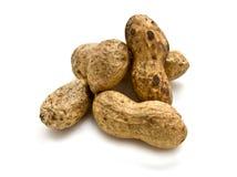 Free Nuts Royalty Free Stock Photos - 12703818