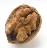 Nuts. Our fresh raw and half open Stock Photo