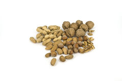 Nuts. Assortment of nuts in skarlupe and peeled Stock Images