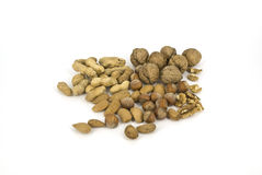 Nuts. Assortment of nuts in skarlupe and peeled Stock Photography