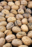 Nuts. Background made of many nuts Royalty Free Stock Images