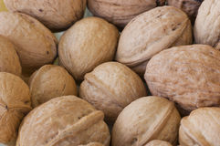 Nuts Stock Images