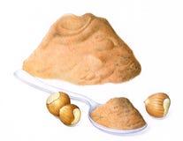 Nuts. With hazelnut flour near Stock Image