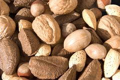 Free Nuts 2 Stock Photos - 100573