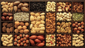 Nuts. Varieties of nuts and other seeds. Food and cuisine