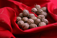 Nuts. On red table cloth Royalty Free Stock Photos
