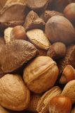 Nuts. Image of various nuts in a pile Royalty Free Stock Image