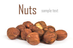 Nuts. Hazel nut isolated on white background Royalty Free Stock Photo