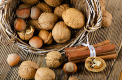 Nuts Royalty Free Stock Images
