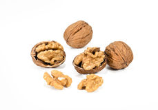 Free Nuts Stock Image - 28418731