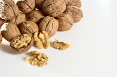 Free Nuts Stock Images - 28424664