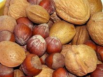 Free Nuts! Stock Photography - 3662812
