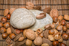 Nuts. Mixed nuts - Brazil nuts, almonds, walnuts, hazelnuts Royalty Free Stock Photo