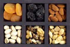 Free Nuts Stock Photo - 3807350