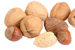 Nuts. Several nuts isolated on white Stock Photos