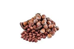 Nuts001 Imagem de Stock