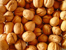 Nuts. For the christmas time royalty free stock image