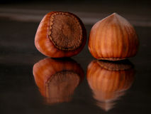 Nuts. Two nuts Royalty Free Stock Images