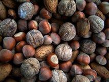 Nuts. Almond,Hazel,walnut stock photo