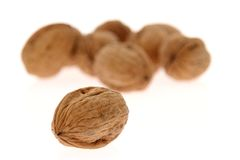 Nuts. Close-up over a white background royalty free stock images