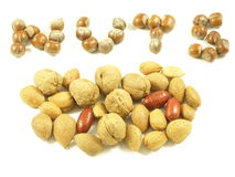 Nuts. Word with hazel,wal,pecans and almonds royalty free stock photos