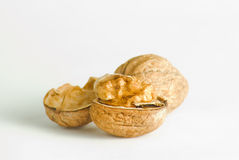 Nuts. The open nut lying on a white background Royalty Free Stock Photo
