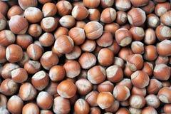 Nuts. Many macro hazelnuts as background Stock Photos