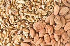 Nuts and almonds Stock Image