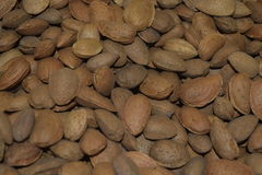 Nuts almonds in bulk. It is a lot of almonds. Almonds fresh there is a lot of. Tasty food royalty free illustration