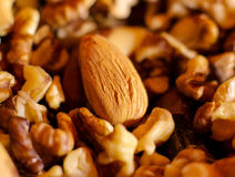 Nuts, almonds and walnuts, lots of nuts Stock Photos