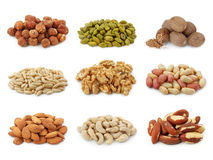 Nuts Ansammlung stockbilder