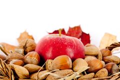 Nuts and appel in a basket Stock Photography