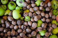 Nuts and apples on pile. Many organic nuts and apples on pile Royalty Free Stock Photo