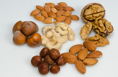 Nuts, apricot seeds, hazelnuts, almonds and cashew Royalty Free Stock Image